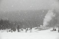 geysers at Old Faithful, 	winter